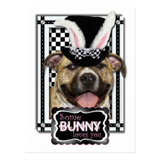 Easter - Some Bunny Loves You - Pitbull Postcard