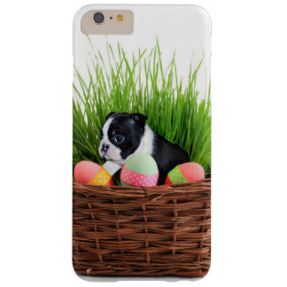 Eastern Boston Terrier dog iphone 6 plus case
