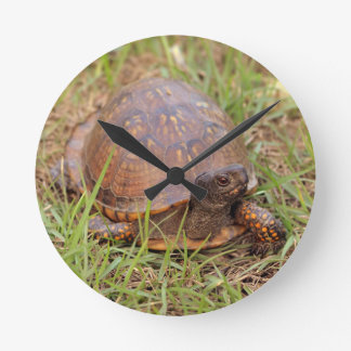 Eastern Box Turtle (North Carolina and Tennessee) Round Clock
