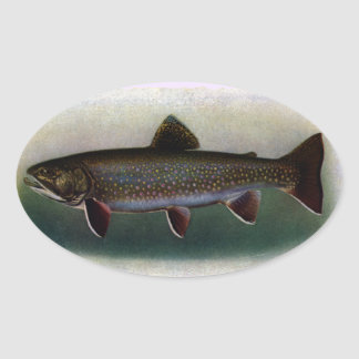 Eastern Brook Trout Painting Oval Sticker