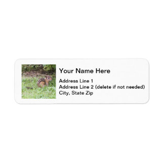 Eastern Chipmunk Return Address Label