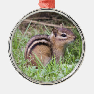 Eastern Chipmunk Silver-Colored Round Ornament