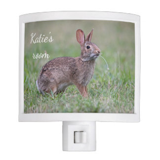 Eastern cottontail bunny night light