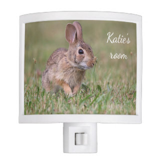 Eastern cottontail bunny nite light