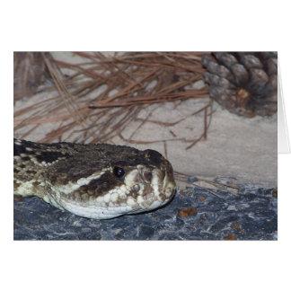 eastern diamondback rattlesnake card