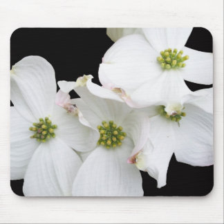 Eastern Dogwood Blossoms - Cornus florida Mouse Pad