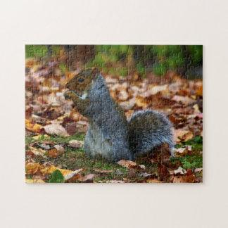 Eastern Gray Squirrel II Jigsaw Puzzle