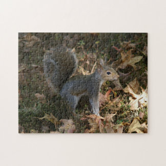 Eastern Grey Squirrel, Photo Puzzle. Jigsaw Puzzle