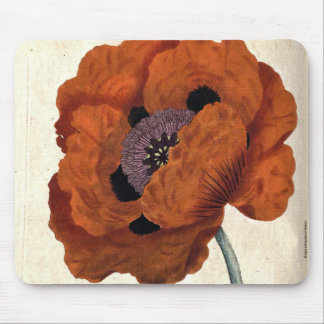 Eastern Poppy Mouse Pad