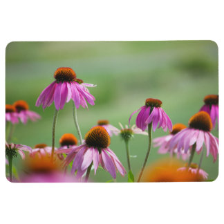 Eastern Purple Coneflowers Floor Mat