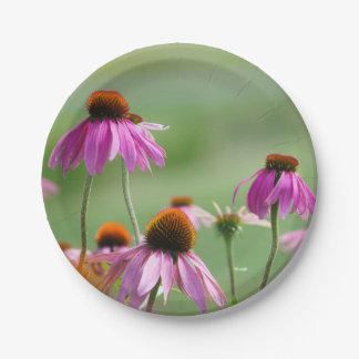 Eastern Purple Coneflowers Paper Plate