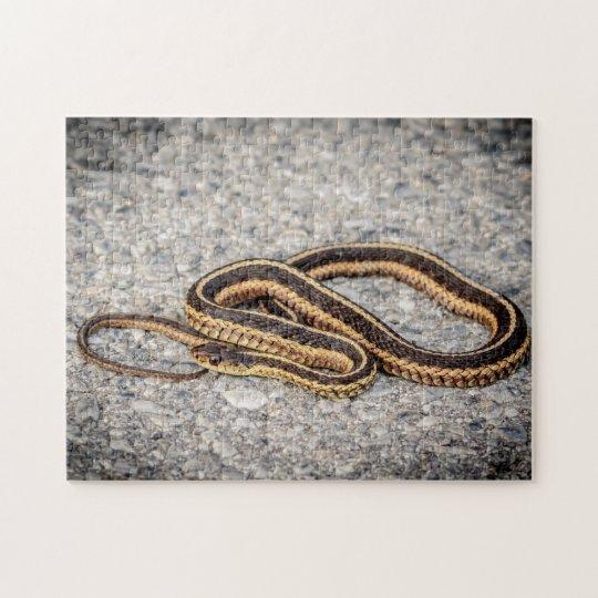 Eastern Ribbon Snake (Garter Snake) Jigsaw Puzzle