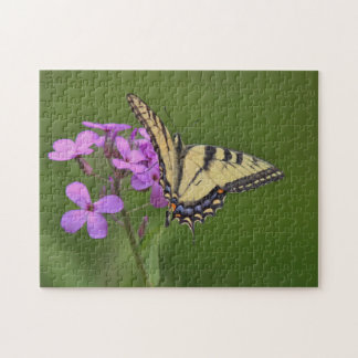 Eastern tiger swallowtail butterfly jigsaw puzzle