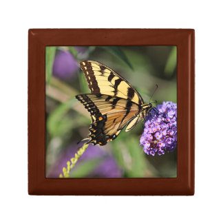 Eastern tiger swallowtail butterfly profile keepsake box