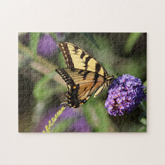 Eastern tiger swallowtail butterfly puzzle