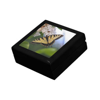 Eastern Tiger Swallowtail Jewelry Boxes