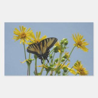 Eastern Tiger Swallowtail on Yellow Daisies