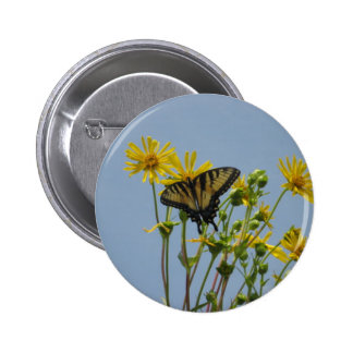 Eastern Tiger Swallowtail on Yellow Daisies Pin