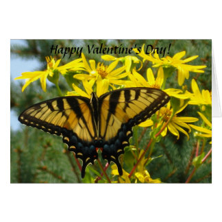 Eastern Tiger Swallowtail Valentine's Day Card