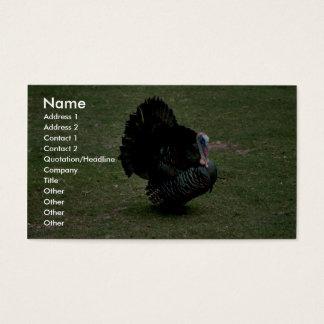 Eastern Wild Turkey Business Card