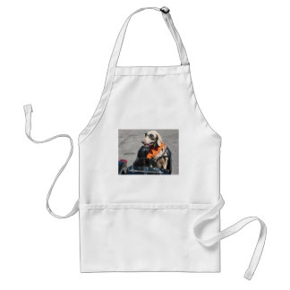 Easy rider standard apron
