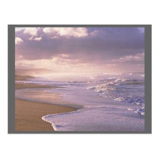 Easy Waves Coastline Atlantic Ocean Postcard