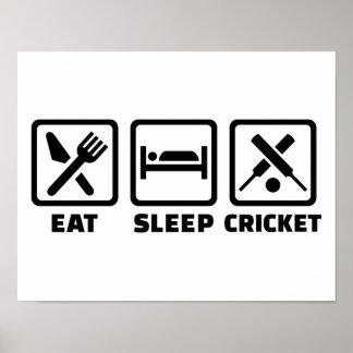 Eat sleep cricket poster