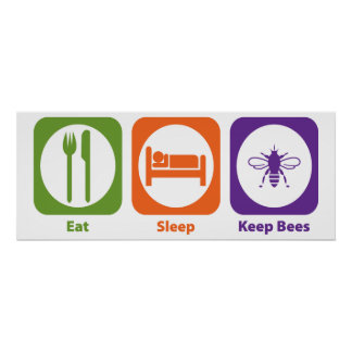 Eat Sleep Keep Bees Poster