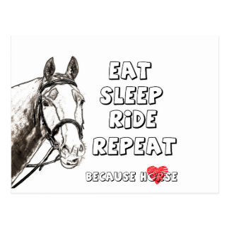 Eat Sleep Ride Repeat Postcard