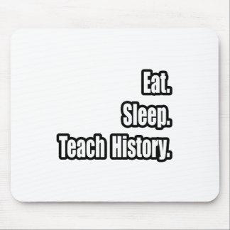 Eat Sleep Teach History Mouse Pads
