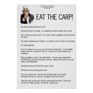Eat the Carp! Poster