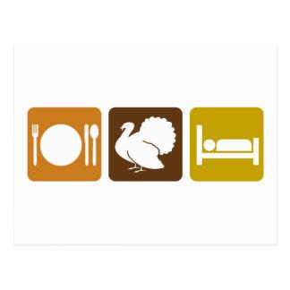 Eat Turkey and Sleep Postcard