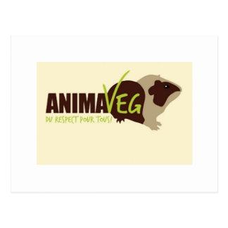Eat Veggies Not Animals! Postcard
