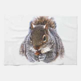 Eating Squirrel Kitchen Towels
