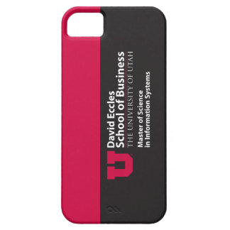 Eccles Information Systems iPhone 5 Cases