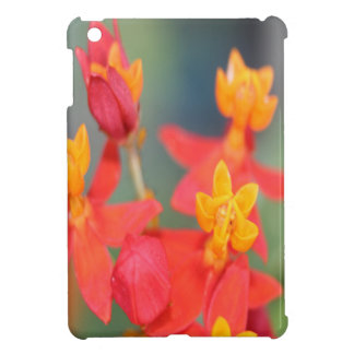 Echeveria Succulent Red and Yellow Flower Case For The iPad Mini
