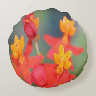 Echeveria Succulent Red and Yellow Flower Round Pillow