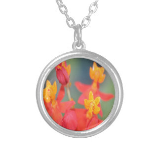 Echeveria Succulent Red and Yellow Flower Silver Plated Necklace