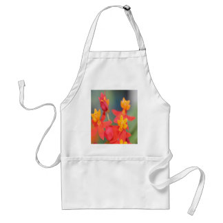 Echeveria Succulent Red and Yellow Flower Standard Apron