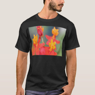 Echeveria Succulent Red and Yellow Flower T-Shirt