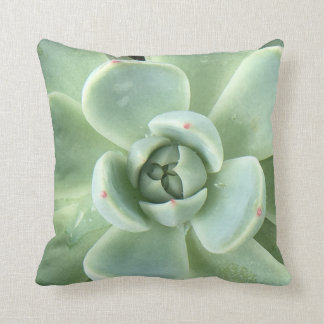 Echeveria Succulent Throw Pillow