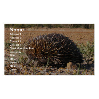 Echidna Finding Food On The Soil Business Card Template