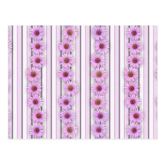 Echinacea Flower Stripes Postcard