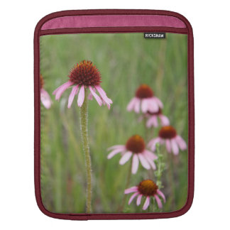 Echinacea iPad Sleeves