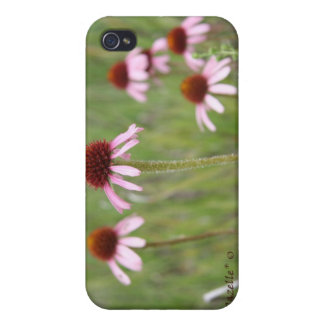 Echinacea iPhone 4 Case