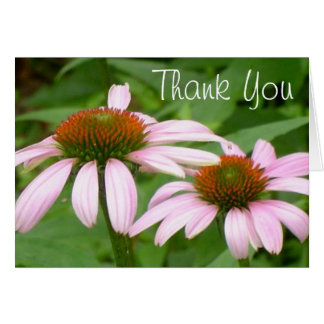 Echinacea Pink Daisy Flower Thank You Notes