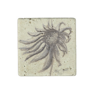 Echinacea Purpurea Watercolor Painting Stone Magnets