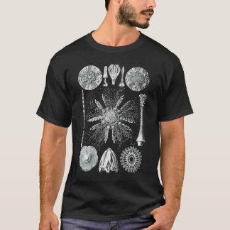 Echinidea T-Shirt