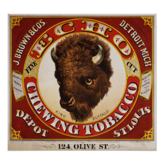 Echo fine cut chewing tobacco poster