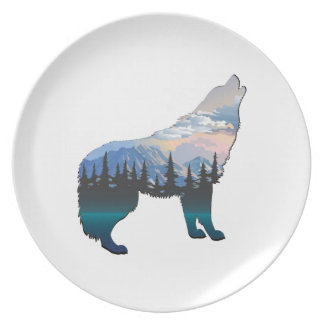 Echo of Yellowstone Plate